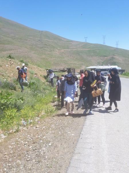 بازدید کارآموزان گیاهان دارویی از گیاهان دارویی منطقه چالوس  - یوش تیرماه 97